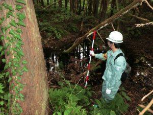 森林調査(鳥類営巣木調査)